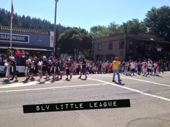 SLV Little League